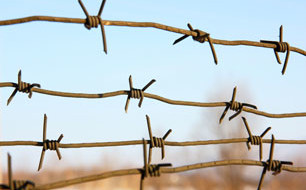 barbed wire – photo ©Arrows